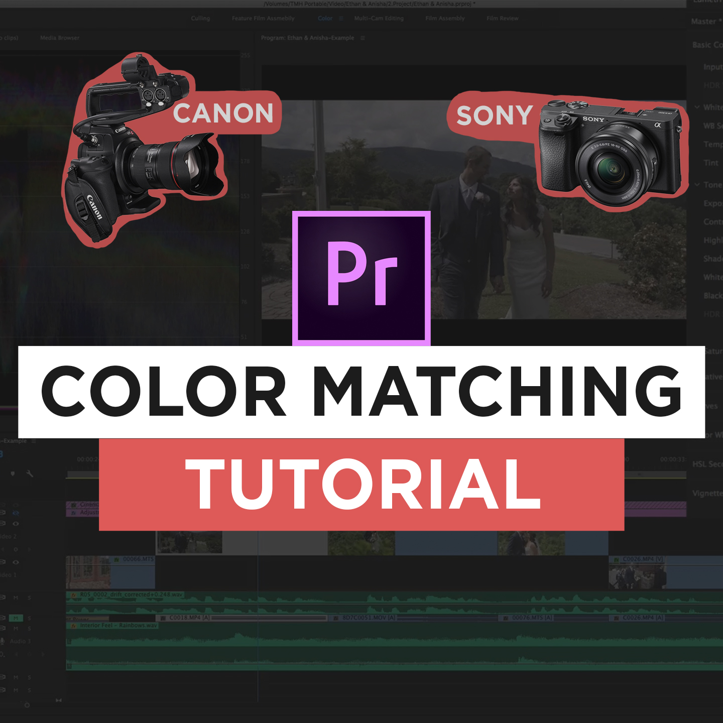 Color Grading Tutorial: How to Match Canon & Sony Footage | Virginia